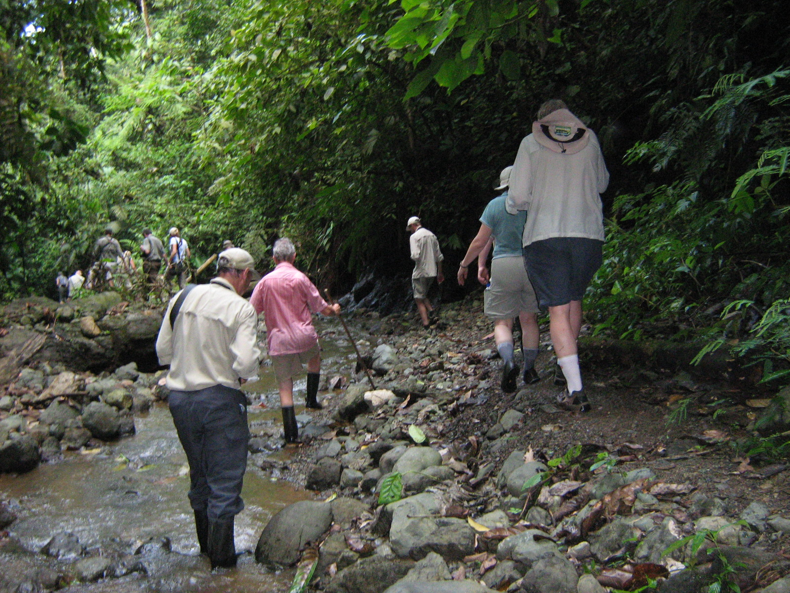 Hiking the Rio Pizote