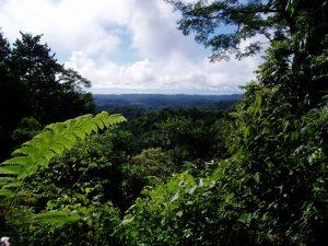 Osa peninsula, corcovado, costa Rica