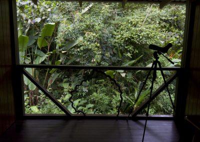 Second Floor Wildlife Observation Area