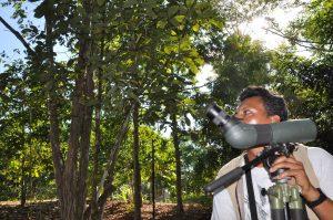 Naturalist and Birding Guides, Dos Brazos, Puerto Jimenez, Corcovado National Park and Peninsula de Osa