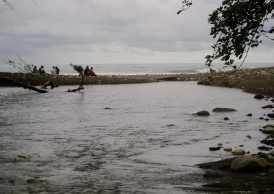 The ocean nearby