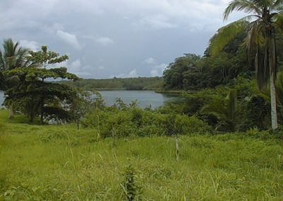 View of the Golfo Dulce